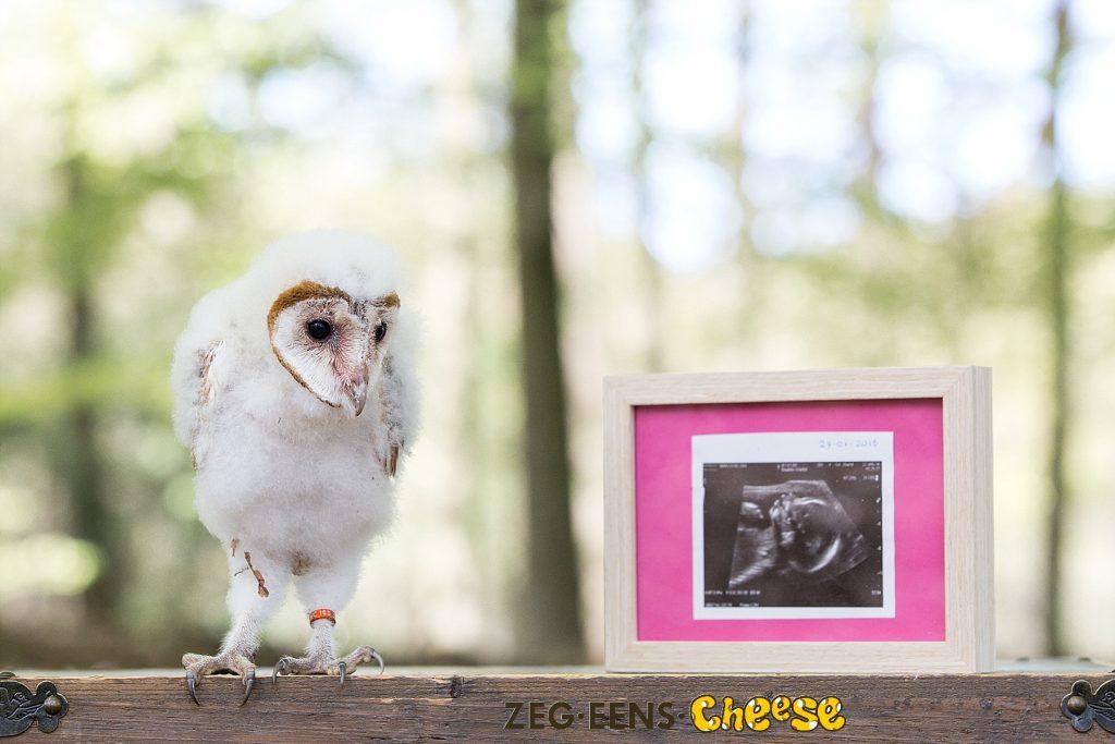 Zwangerschapsfotoshoot_Roofvogels (8)